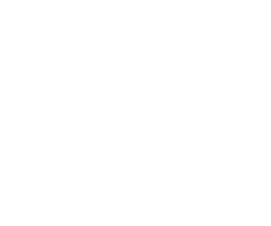 visionyou